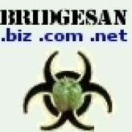 Bridgesan