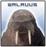 walruus