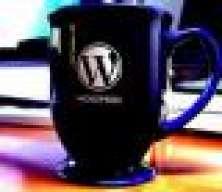 Wordpress_expert