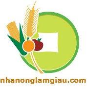 nhanonglamgiau.com