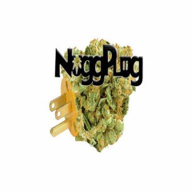 Nuggplug.com