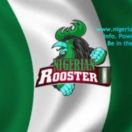 Nigerian Rooster